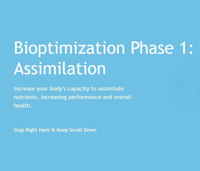 Biopimization Phase1