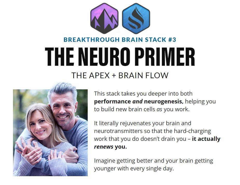 The Neuro Primer